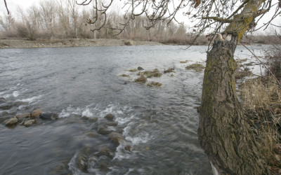 "Floodplains by Design Designates Yakima County a ""Floodplains Luminary"""