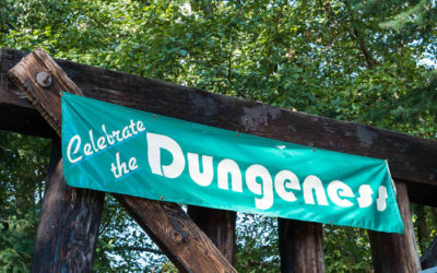 Watch: Managing Water Resources in Dungeness Watershed