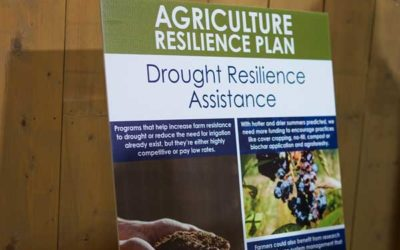 Agriculture Resilience